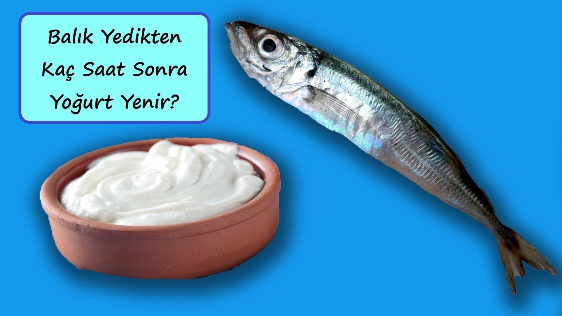 balık yedikten kaç saat sonra yoğurt yenir