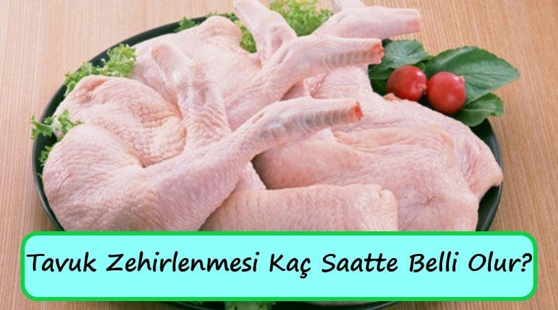 Tavuk Zehirlenmesi Kaç Saatte Belli Olur?